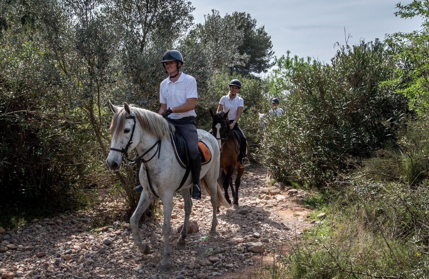 Ruta ecuestre Montes de la concordia - Turisme Llíria